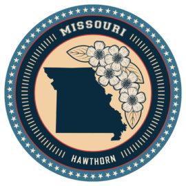 Missouri LPC Requirements