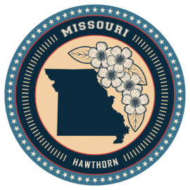 Missouri LPC Requirements